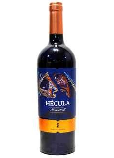 Punane vein Hécula