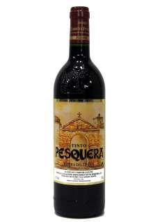 Vein Remírez de Ganuza